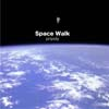 spacewalk100.jpg